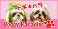 富山市ペットショップ ドギーパラダイス